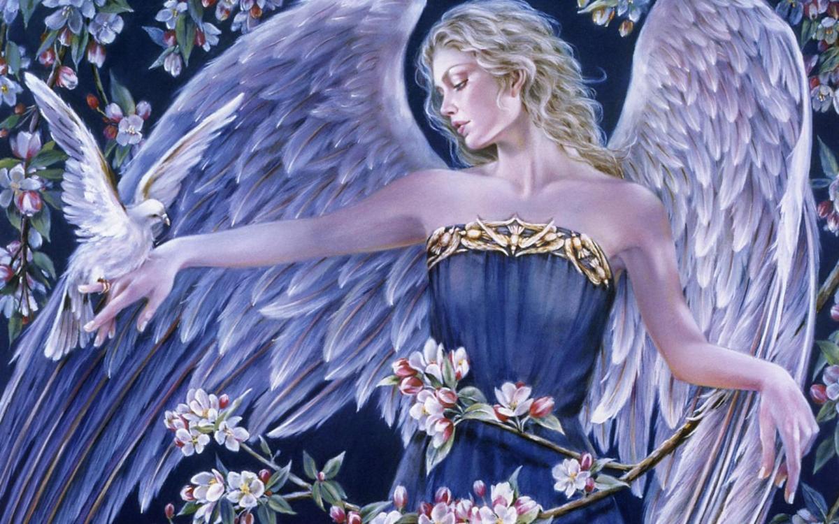 Angel Whispers 2015