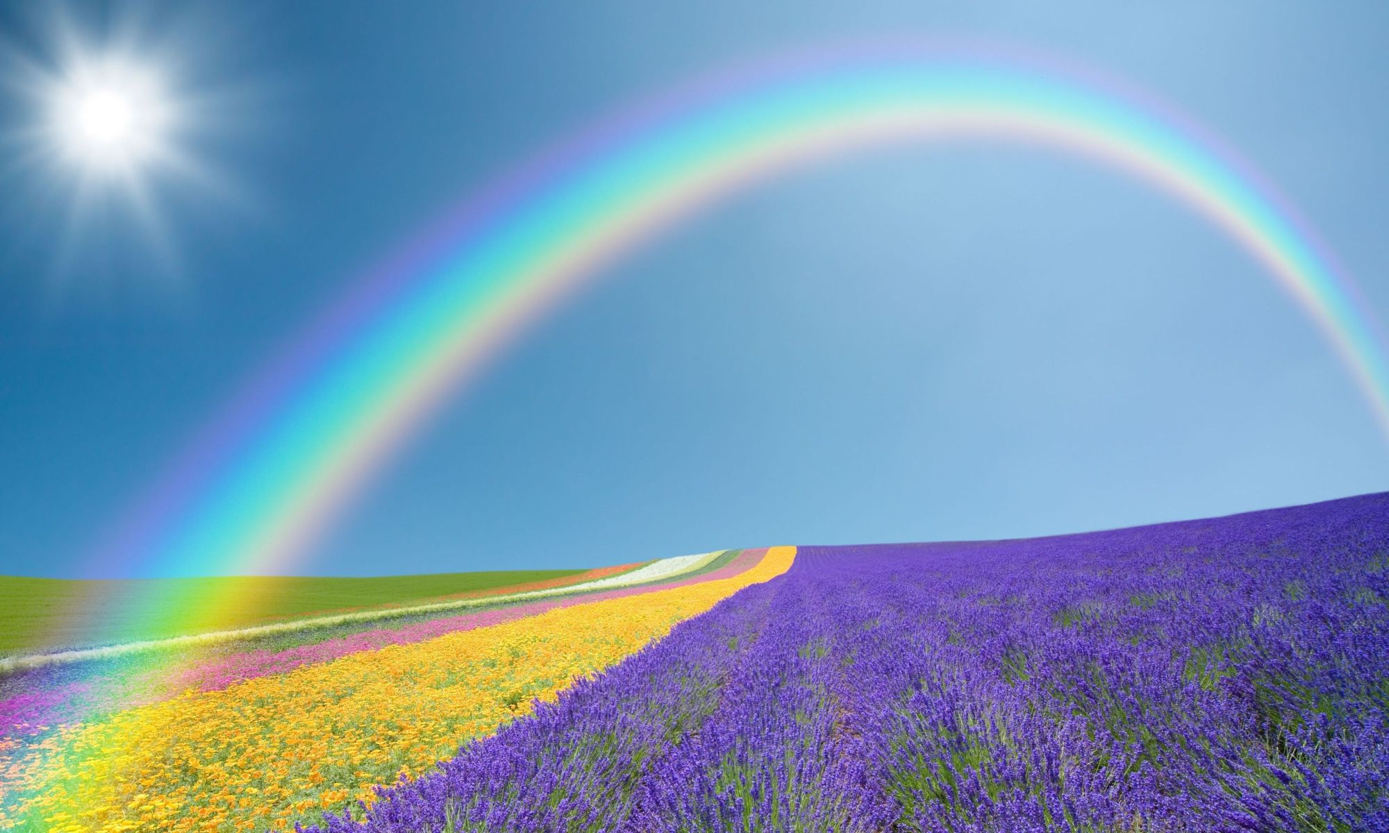 Rainbow Symbolic Meaning Whispers Channels Prophecies Visions