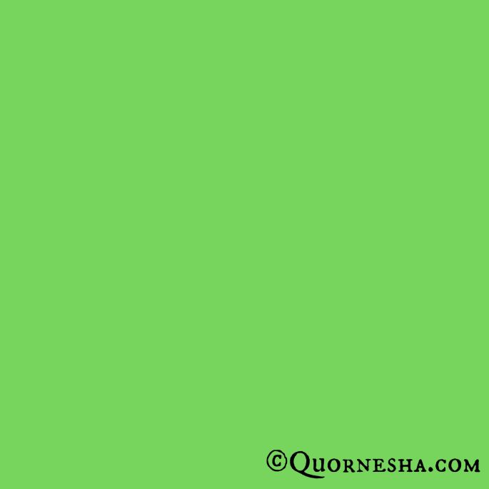 The Color Green Symbolic Meaning Whispers Channels Prophecies