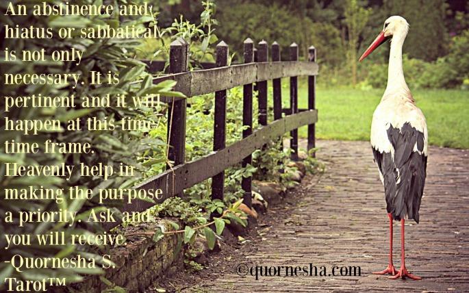 588-595-quornesha.com-card23-quornesha.s.tarot