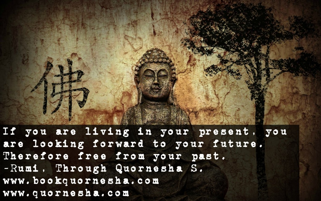 8885bookquornesha.com