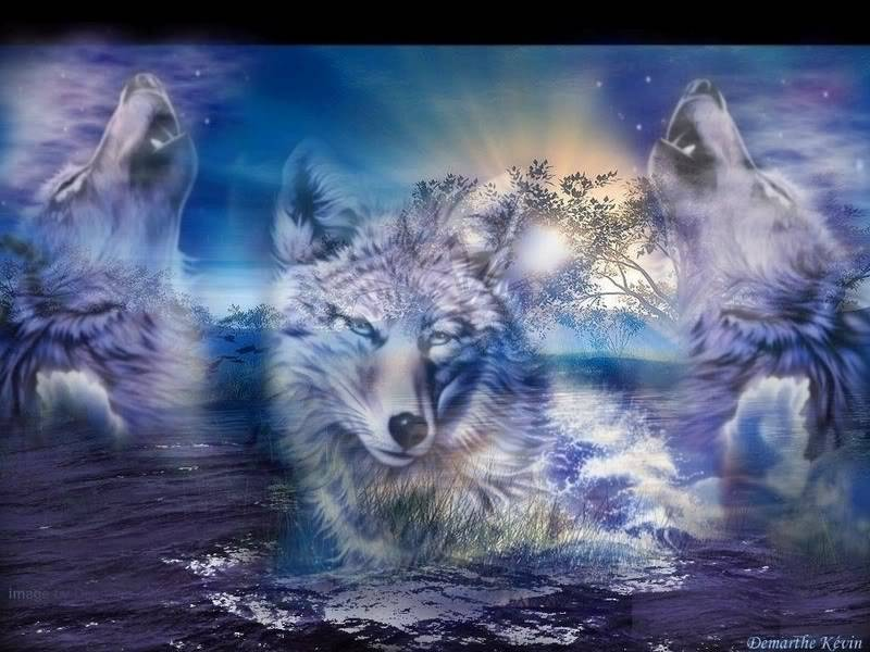 White Wolf Symbolism Whispers Channels Prophecies Visions