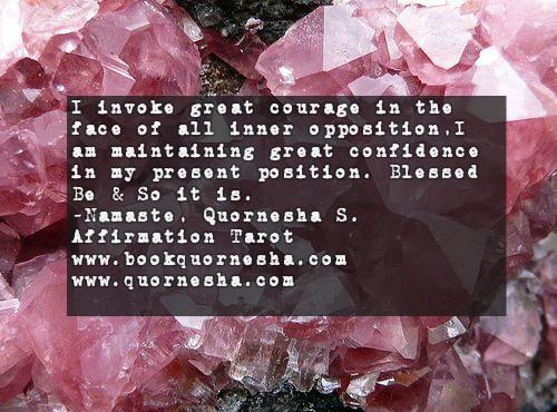 779-bookquornesha.com1056