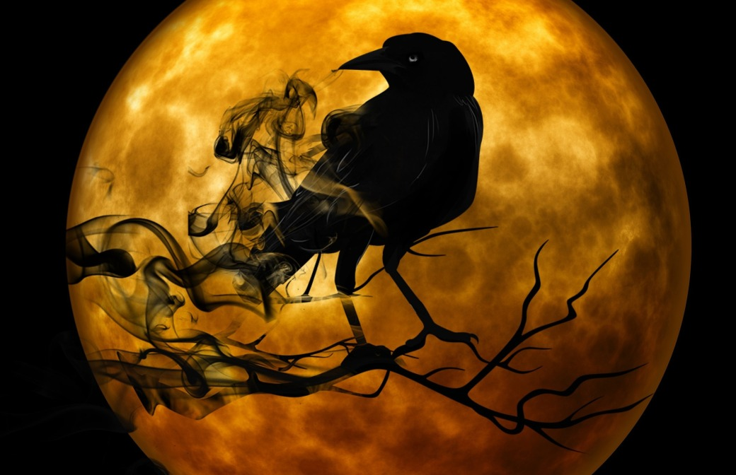 Ravens Symbolic Meaning Whispers Channels Prophecies Visions