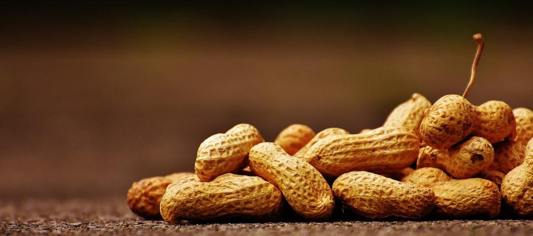 peanuts-1735668_1920